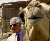 Έφτασαν στην Ελλάδα ο Κάρολος και η Καμήλα (ΦΩΤΟ)